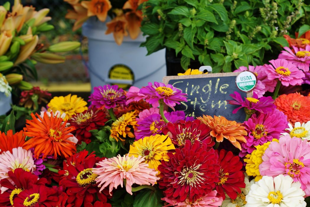 3 Reasons You Should Be Buying Flowers at the Farmer's Market