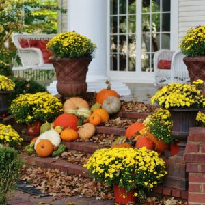 A Bundle of Fall Porches You'll Love