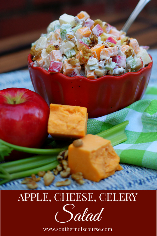 Chopped apples, block cheddar cheese, celery and walnuts make a simple salad that is hard to resist!