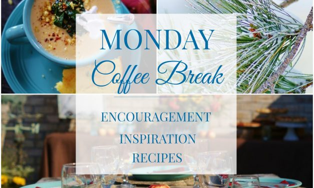 Monday Coffee Break #17