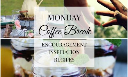 Monday Coffee Break #29