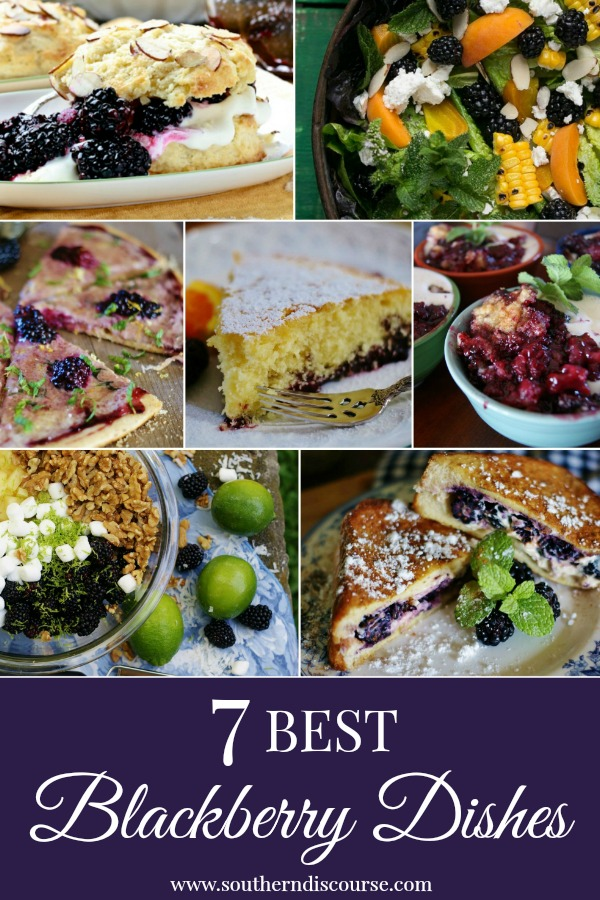 7 of the best blackberry recipes for summer. From breakfast to salads to fruit pizza to desserts!  #southerndiscourse #blackberries #summer #fruit