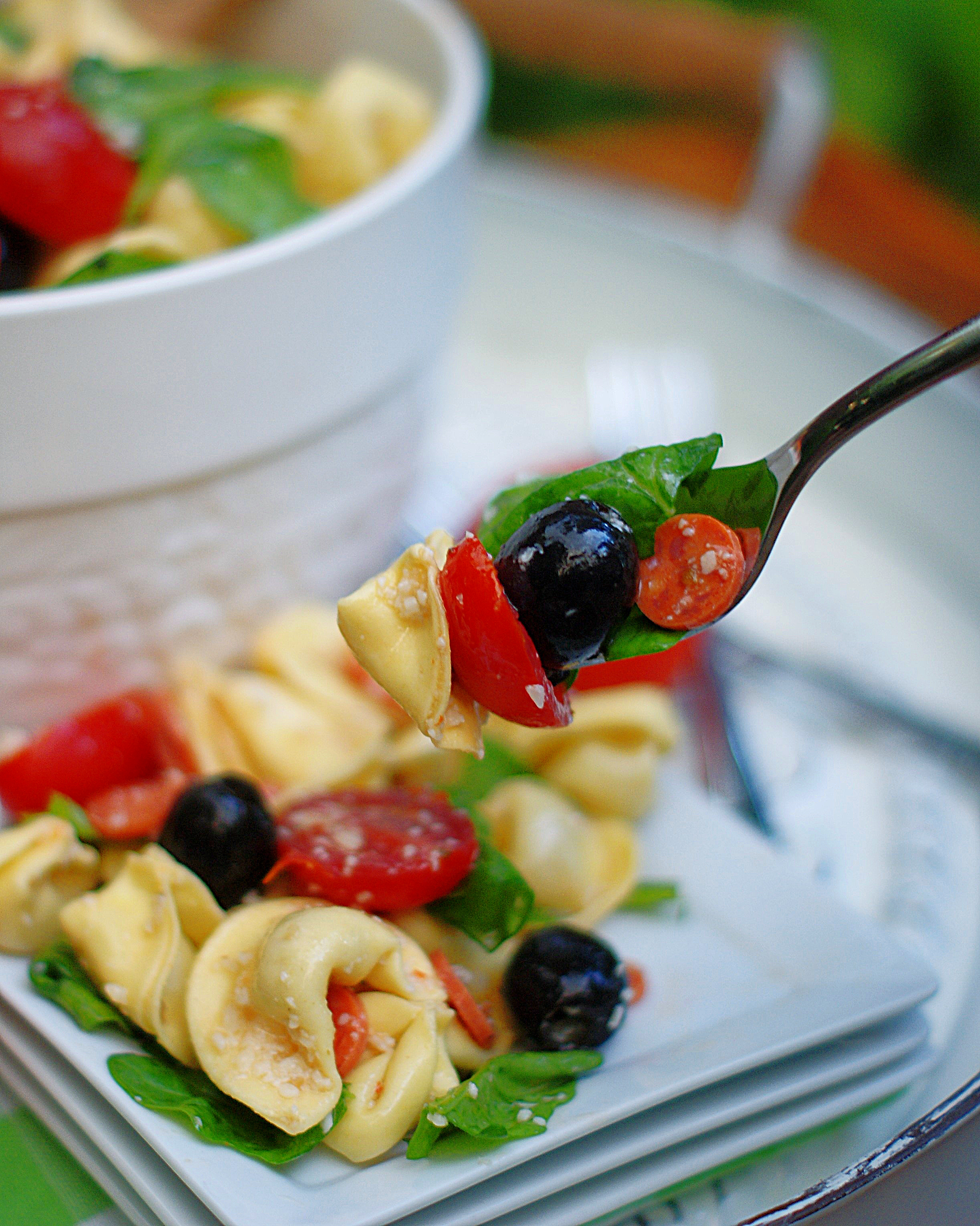 A forkful of tortellini pasta salad with a tomato. 2 cheese tortellini, black olive, pepperoni and spinach leaf.