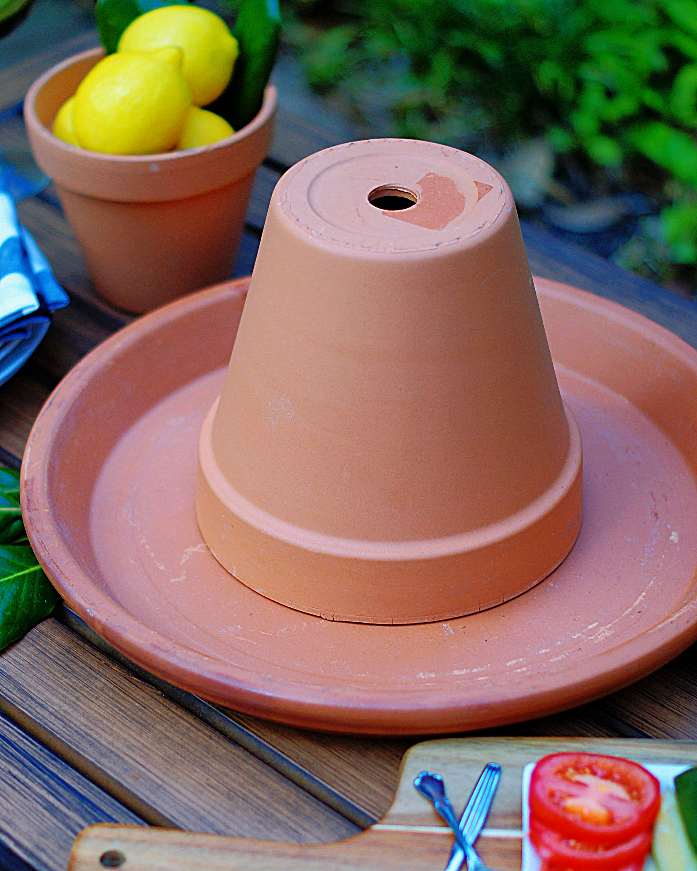 Lemon Centerpiece Step 1 with large terracotta tray and medium pot.