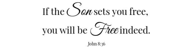 Beef & Mushroom Rice Scripture John 8:36