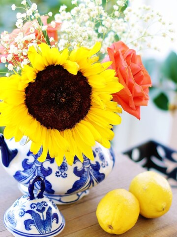 A sunflower in a white and blue teapot