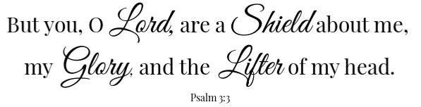 Psalm 3:3 The Broiler Burger Scripture
