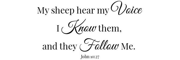 3 Cheese Manicotti Scripture- John 10:27