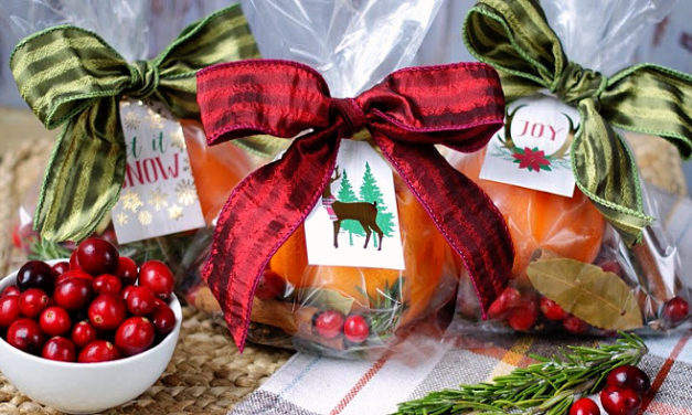 Holiday Simmer Pot- Gifts for Hostesses & Guests