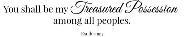 Peach BBq Meatballs Scripture- Exodus 19:5