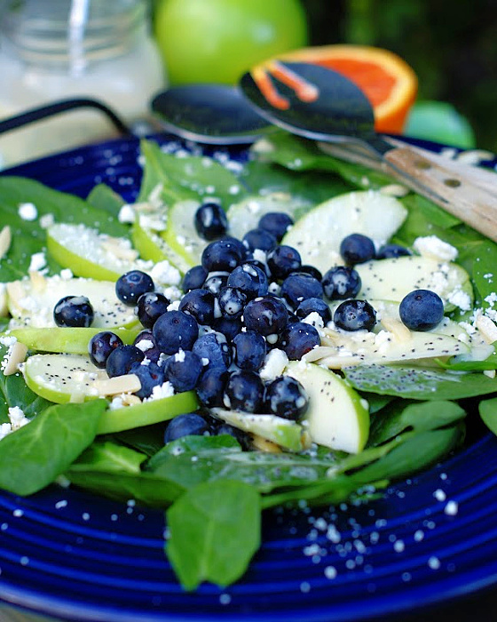 A closeup of a blueberry spinach salad with homemade dressing.