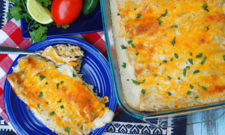 Simply Authentic Sour Cream Chicken Enchiladas