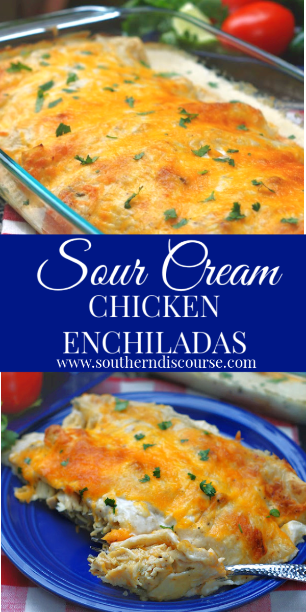 Simply Authentic Sour Cream Chicken Enchiladas Southern Discourse