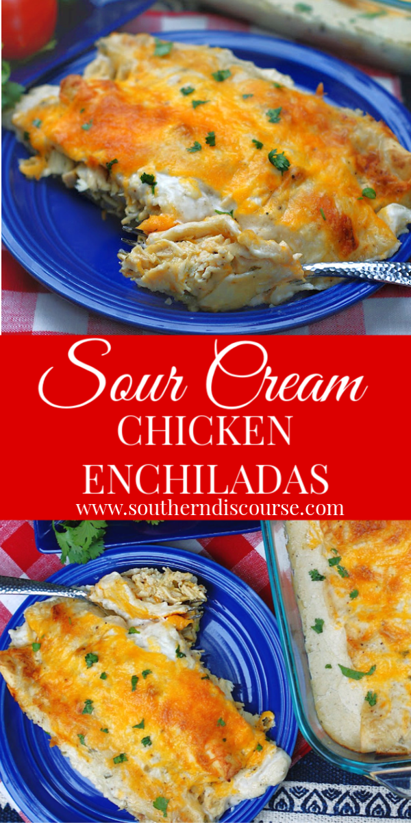 This is the BEST recipe for authentic sour cream enchiladas. With an easy sour cream sauce, these easy hand rolled green chile, cheese & chicken stuffed enchiladas are a classic recipe. #enchiladarecipe #texmexrecipe #mexicanfood #chickenenchiladas #sourcreamsauce