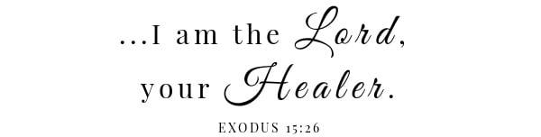 Skillet Pork Chops & Mustard Cream Sauce Scripture- Exodus 15: 26