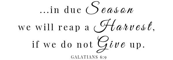 Creole roasted turkey breast scripture- Galatians 6:9