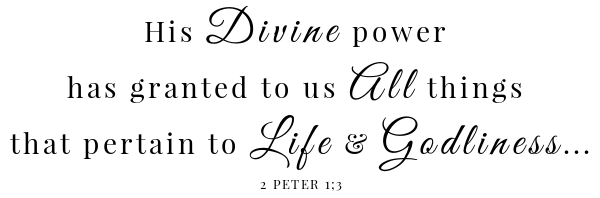 Fluffy Mashed Sweet Potatoes Scripture- 2 Peter 1:3
