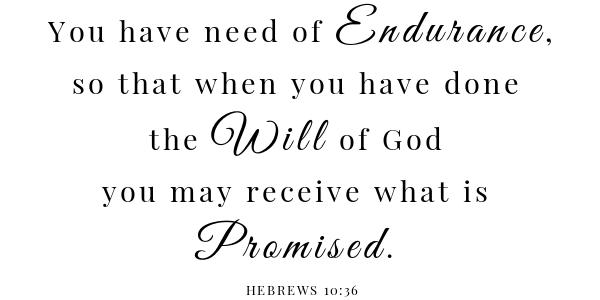 Louisiana Dirty Rice Stuffed Peppers scripture- Hebrews 10:36