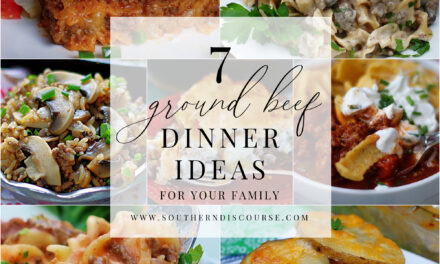 7 Ground Beef Dinner Ideas For Your Family- Saturday Seven