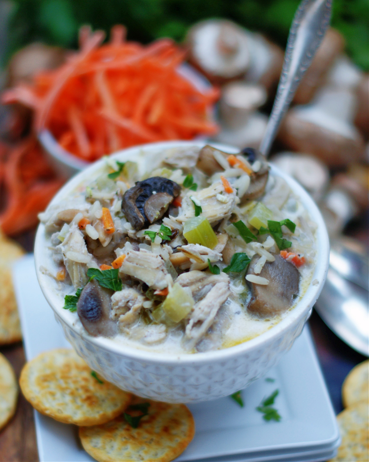 Chicken Wild Rice Soup with Mushrooms, Carrots, Celery, Onion and cream base