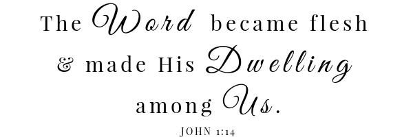 7 - كتاب سلطة البازلاء المقدسة - يوحنا 1 14