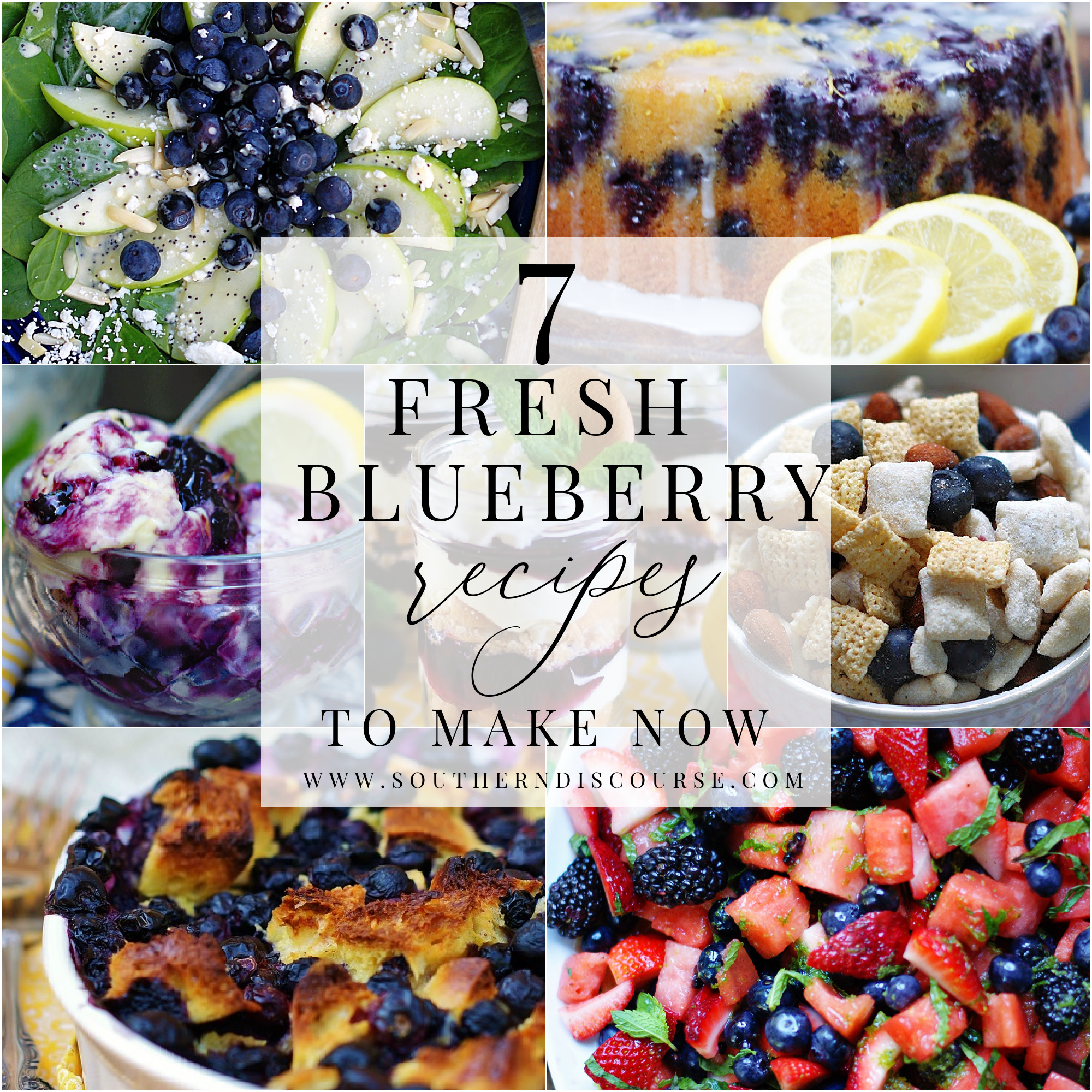 7 fresh blueberry recipes title collage